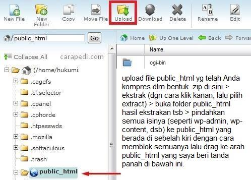 cara restore dan back up database