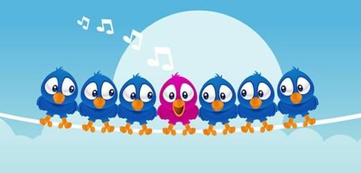 cara menambah follower twitter dengan cepat dan mudah